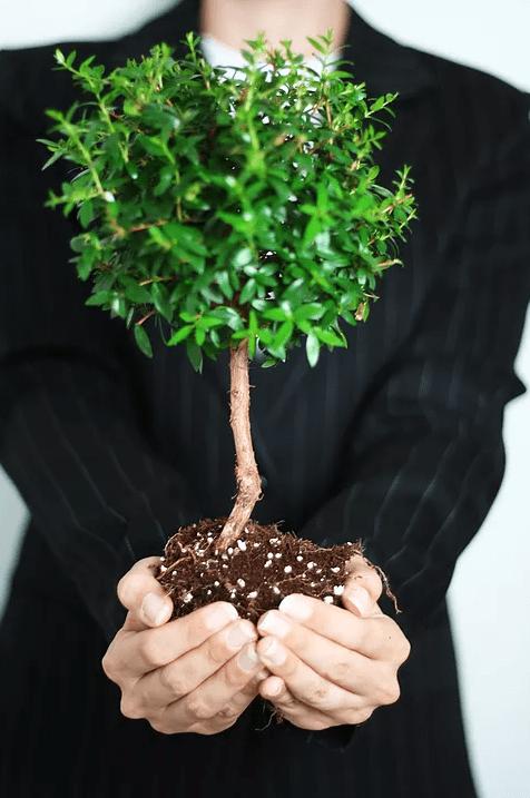 conpany corporate social responsibility sustainable development goals laurel leaf networking blogs